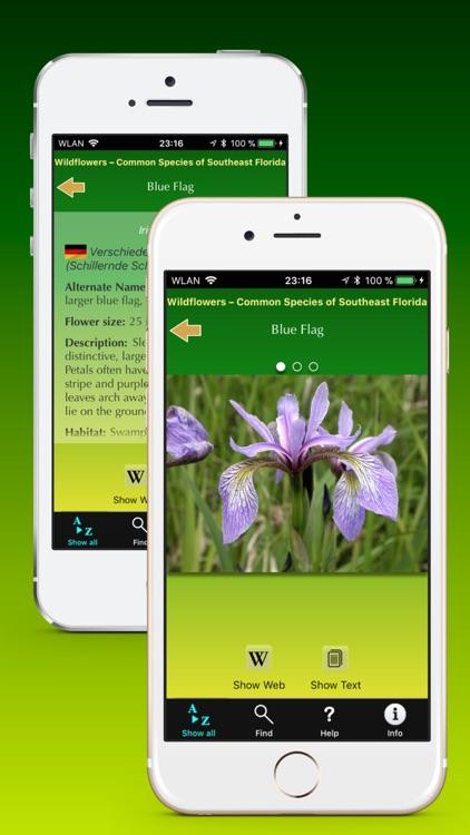 Southern Florida Wildflowers screenshot-3