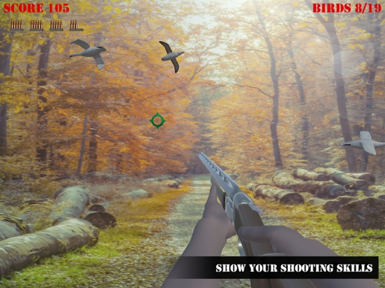 Wild Bird Hunter America screenshot 5