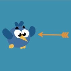 Activities of Shoot Flapping Bird