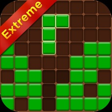 Activities of Forest Block Puzzle Extreme