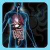 A-Z: Full Body Anatomy