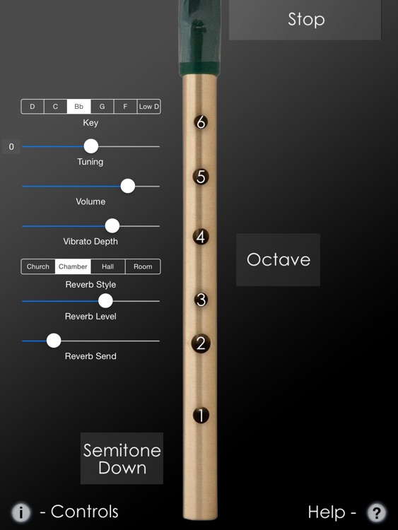 Tin Whistle Pro screenshot-1