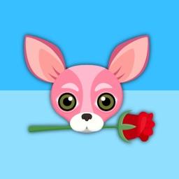 Pink Valentine's Chihuahua