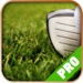 Game Net for - Tiger Woods PGA Tour 14