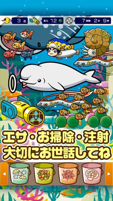 すいぞく館~魚を育てる楽しい育成ゲーム~スクリーンショット2