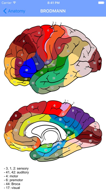Oracle of Neurology and Neurosurgery screenshot-3