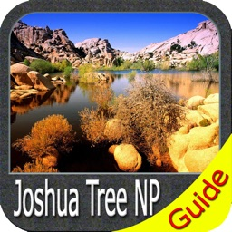 Joshua Tree National Park - Standard