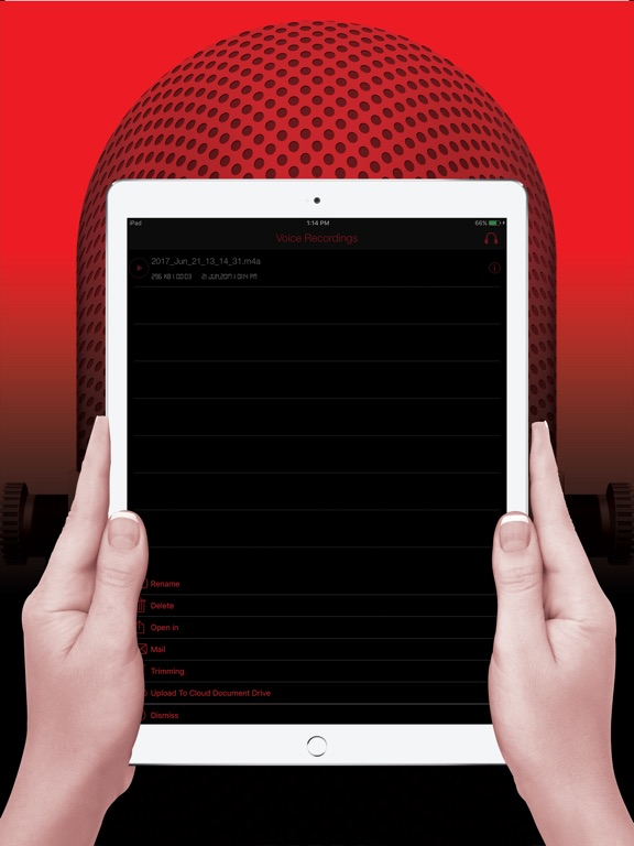 Voice Recorder HD Pro Screenshots