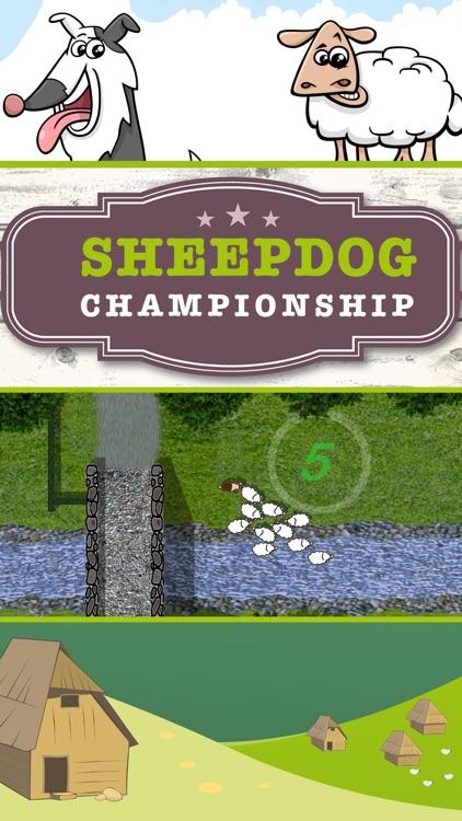 Sheep dog Championship FULL
