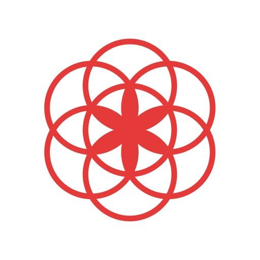 Clue - 生理サイクル予測アプリ