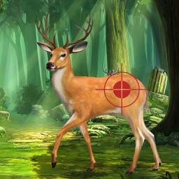 Buck Hunting Classic Challenge