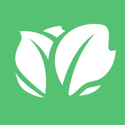 Kabbage - Small Business Loans