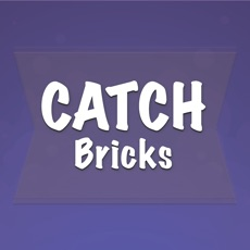 Activities of Catch Briсks