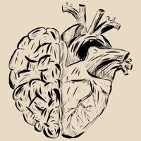 Codes for Anatomy Trivia: Science Quiz Hack