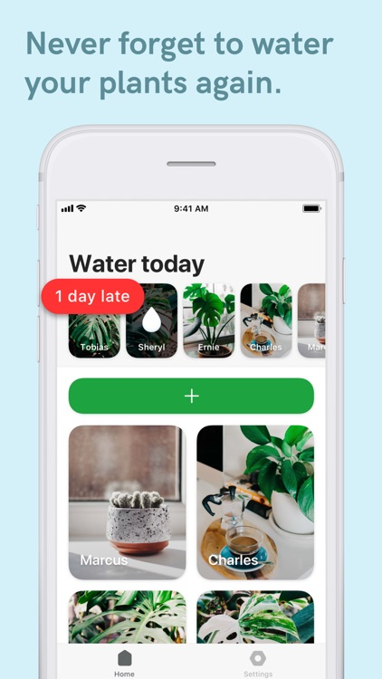 Potted - Plant Water Reminder