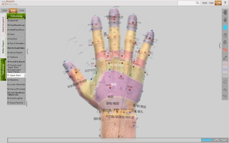 Hand Acupuncture скриншот программы 2