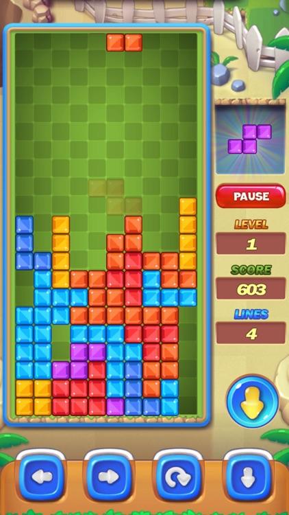 Block Puzzle - Brick Retro HD screenshot-4