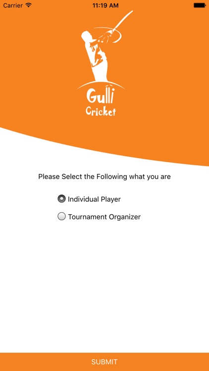 Gulli Cricket