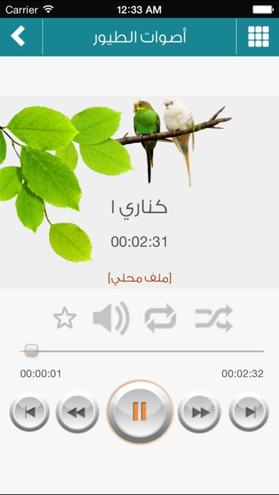 أجمل أصوات الطيور والعصافيرلقطة شاشة2