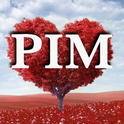 PIM - Promises in Moments