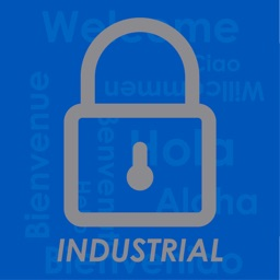 Intrare Industrial