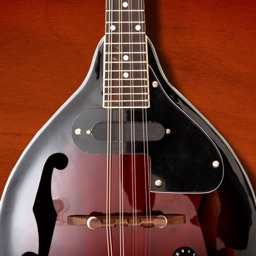 Mandolin Companion