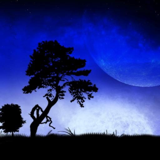 Blue Moon (ブルームーン)