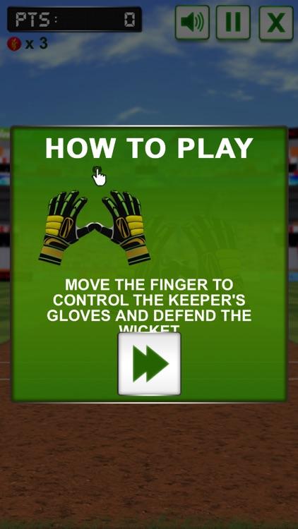 Baseball Catcher Challenge