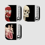 3D4Medical Body Systems for iPhone