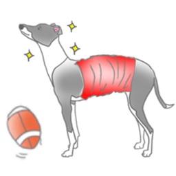 Italian Greyhound Dog IggyMoji