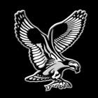 Fish Hawk icon