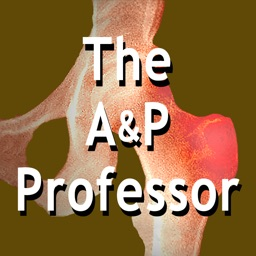 The A&P Professor | TAPPradio