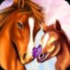 ホースパラダイス - マイドリーム牧場