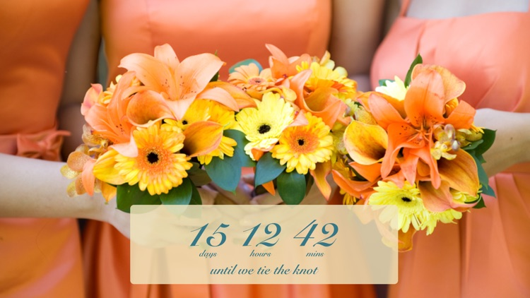Wedding Countdown screenshot-3