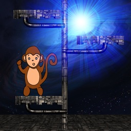 Monkey's Space Journey