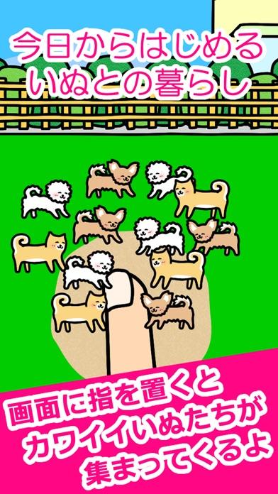 いぬとあそぶ - 癒しのわんこゲームスクリーンショット1