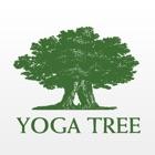 Yoga Tree SF icon