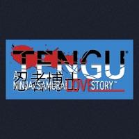 Codes for Tengu: A Ninja/Samurai Love Hack
