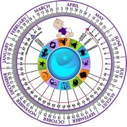 Pregnancy Wheel HD