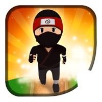 Codes for Kung Fu : Ninja Run Hack