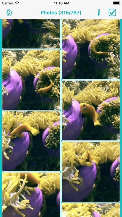 Video 2 Photo Extractor screenshot-3