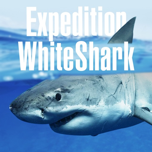 Expedition White Shark