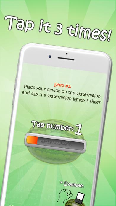 iWatermelon Deluxe Screenshot 5