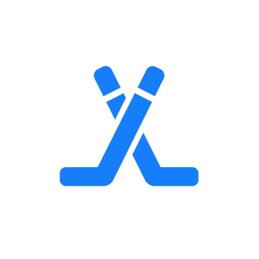 Hockey Player Stats