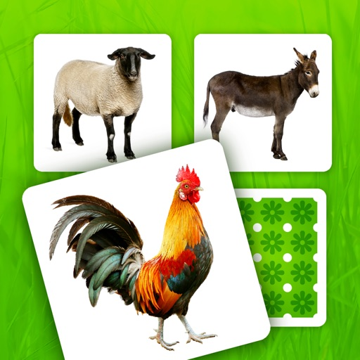 Farm Pairs - Match Animals
