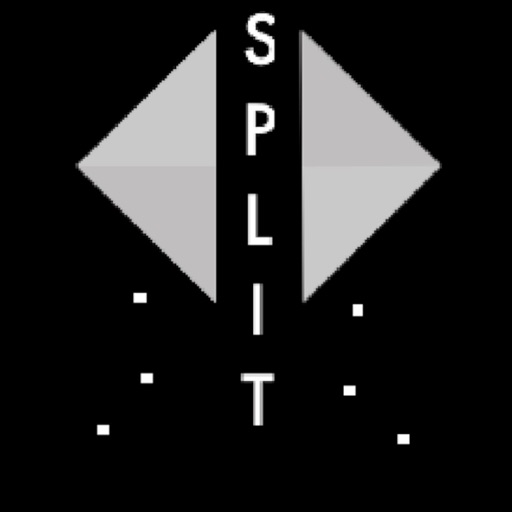 Split   Arcade Game