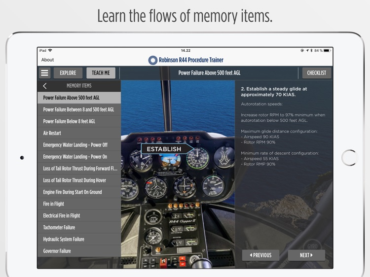 Robinson R44 Procedure Trainer screenshot-4