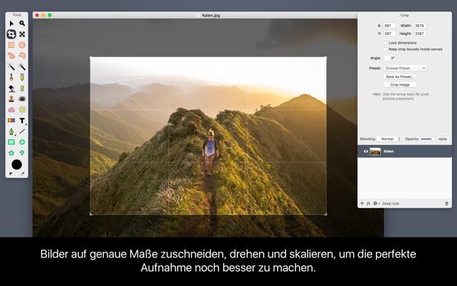 Acorn 6 Screenshot