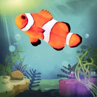 Codes for Fishes Aquarium for Toddlers Hack