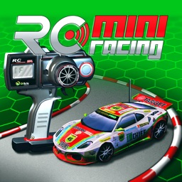 RC Mini Racing EX